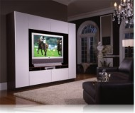 Alexander  custom entertainment wall