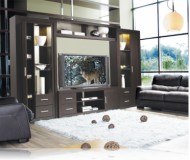 Chrystie  wall unit furniture