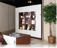 Harrison  contemporary bookcase