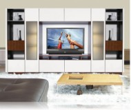 Victor  contemporary wall unit